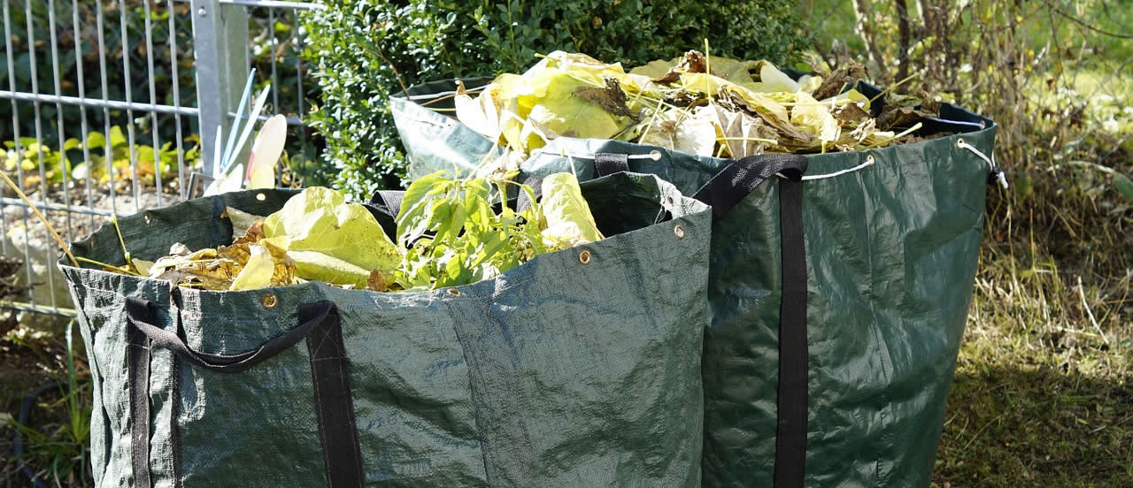 Garden waste collection charges in Wealden