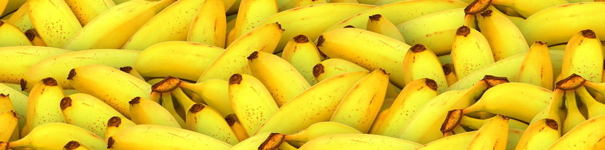 Banana skins can be used to create electricity